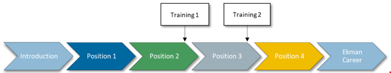 Trainee Program Timeline